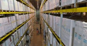 Forklifts στην αποθήκη εμπορευμάτων της επιχείρησης, σύγχρονη φωτεινή αποθήκη εμπορευμάτων βιομηχανικό εσωτερικό φιλμ μικρού μήκους