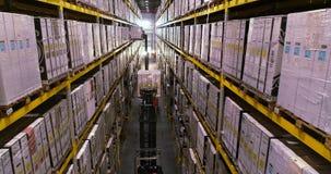 Forklifts in voorraad, speciaal materiaal De vorkheftruck heft doos op stock videobeelden