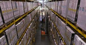 Forklifts in voorraad, speciaal materiaal Vorkheftruck opheffende doos stock footage