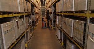 Forklifts w magazynie przedsięwzięcie, nowożytny jaskrawy magazyn wnętrze przemysłowe zbiory wideo