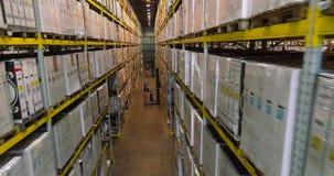 Forklifts w magazynie przedsi?wzi?cie, nowo?ytny jaskrawy magazyn wn?trze przemys?owe zdjęcie wideo