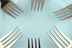Forks on blue dish Royalty Free Stock Image