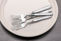 Forks in a Plate Stock Photos