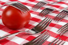 Forks and tomato Stock Photography