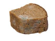 Form auf altem Brot stockbild