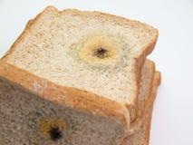 Form auf Brot Lizenzfreies Stockbild