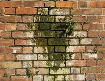 Form auf einer Wand Stockfotos