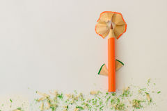 Form einer Blume Lizenzfreies Stockbild
