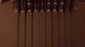 Form för form för chokladgodis i process av att skapa candys Arkivfoto