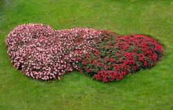 Form för hjärta för blommaträdgård Royaltyfri Fotografi