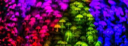 Form för paraplyet för nattljusbokeh, defocused bokeh tänder, blurr Arkivfoto