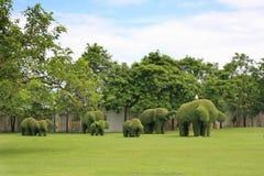 Form för trädbuskeelefant Arkivbilder