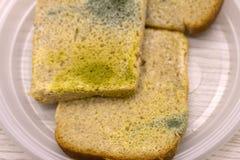 Form på skivor av vitt bröd Gjuta på mat Bröd med mjöldagg Rutten mat, bröd Makroperspektiv inget Shoppar hemmet, royaltyfri foto
