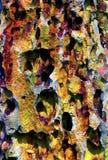 Formação colorida das estalactites da caverna