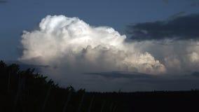 Formação da nuvem de trovão vídeos de arquivo