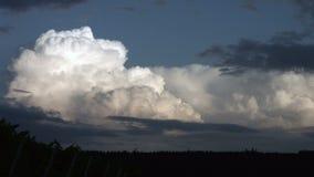 Formação da nuvem de trovão video estoque