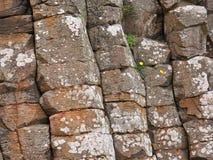 Formação de pedra de pedras angulares na costa de Irlanda do Norte fotografia de stock