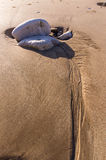 formação de rocha 2 Imagem de Stock Royalty Free