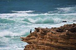 Formação de rocha gigante no oceano Imagem de Stock Royalty Free