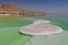 Formação de sal em Ein Bokek, Mar Morto, perto de Neve Zohar, Israel fotos de stock royalty free