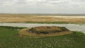 Formação do pântano de Enkongu e de rocha vulcânica no amboseli imagens de stock