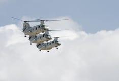 Formação do vôo do trio do cavaleiro do mar Fotografia de Stock