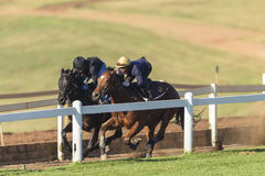 Formação dos cavaleiros dos cavalos de raça Imagens de Stock