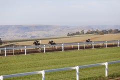 Formação dos cavaleiros dos cavalos de raça Fotografia de Stock Royalty Free