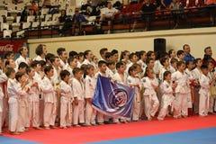 Formação dos lutadores de Jiu Jitsu para a fotografia do grupo imagem de stock