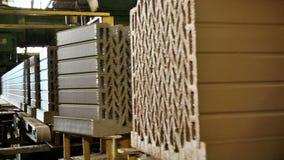 Formação e fabricação da fábrica cerâmica do tijolo filme