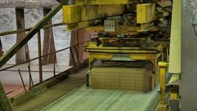 Formação e fabricação da fábrica cerâmica do tijolo vídeos de arquivo