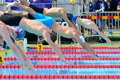 A formação em uma plataforma de lançamento da nadada Fotos de Stock