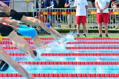 A formação em uma plataforma de lançamento da nadada Foto de Stock Royalty Free