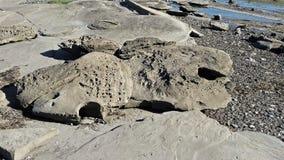 formações de rocha Água-cinzeladas na ilha de Hornby, BC foto de stock royalty free