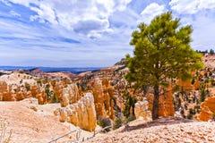 Formações de rocha cênicos de Bryce Canyon Amphitheatre, Utá fotos de stock royalty free