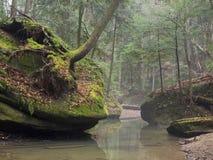 Formações de rocha com vegetação e árvores Imagem de Stock Royalty Free