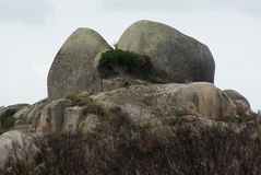 Formações de rocha em Tasmânia fotos de stock royalty free