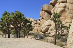 Formações de rocha escondidas do vale da árvore de Joshua Fotos de Stock Royalty Free