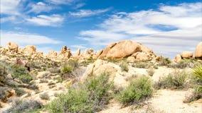 Formações de rocha espetaculares em Joshua Tree Time Lapse vídeos de arquivo