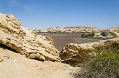 Formações de rocha naturais e vegetação escassa no lago Arco no deserto do ` s Namib de Angola Imagens de Stock