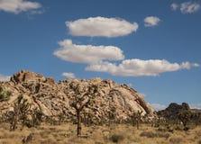 Formações de rocha sob um céu bonito em Joshua Tree National Park, Califórnia foto de stock
