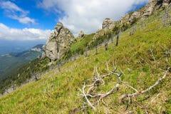 Formações Geological em montanhas de Ciucas, a Transilvânia, Roménia Foto de Stock Royalty Free