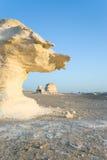 Formações no deserto branco Fotos de Stock Royalty Free