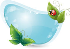 Forma azul con las hojas y el ladybug Imagenes de archivo