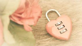 Forma chiave del cuore Immagini Stock