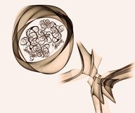 Forma Curvy colorida do sumário artístico, dada forma como Rose Artwork ilustração royalty free