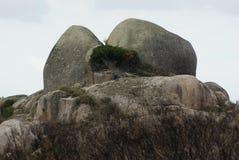 Forma da rocha de Tasmânia Fotos de Stock