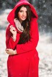 Forma das mulheres do inverno foto de stock