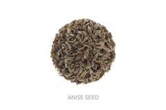 Forma de la semilla del anís del círculo Fotografía de archivo