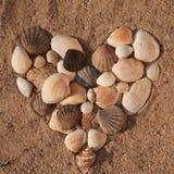 Forma de los corazones de cáscaras del mar Imagen de archivo